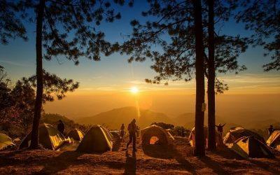Taquillas para Campings: tipos y usos